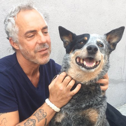 Bosch Amazon Prime Crime Show Titus Welliver