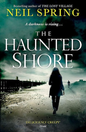 The Haunted Shore by Neil Spring crime novel