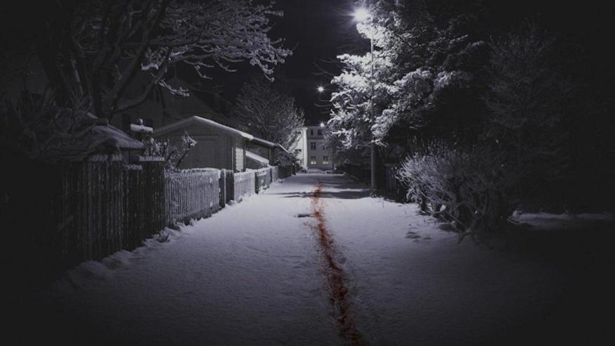 The Valhalla Murders, Icelandic crime show