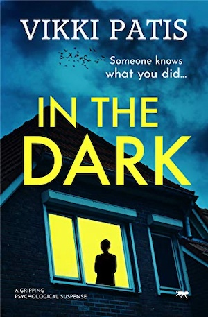 In the Dark by Vikki Patis front cover
