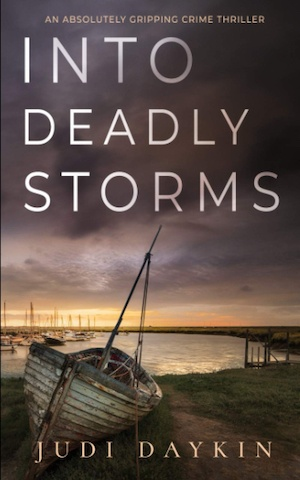 Into Deadly Storms by Judi Daykin front cover