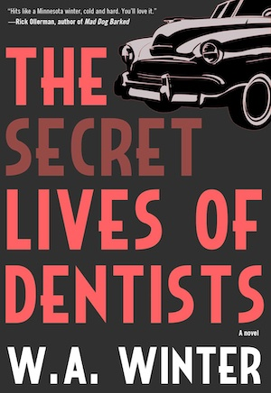 The Secret Lives of Dentists front cover