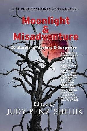 Moonlight and Misadventure short story anthology